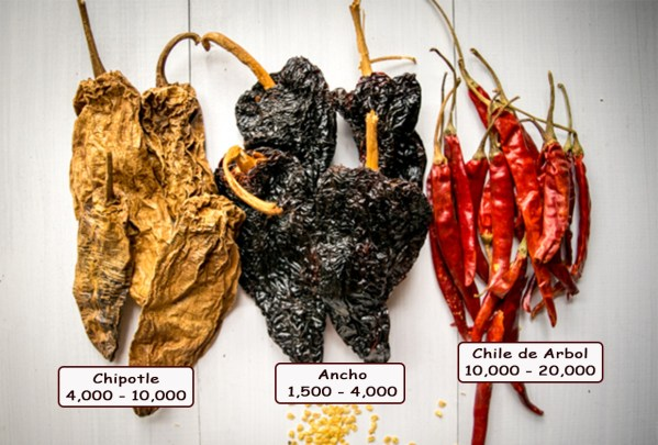 ANCHO-CHILE-PEPPER-FRESH-PRODUCE-GROUP-LLC3.jpg