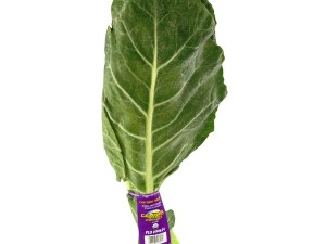 COLLARD GREENS FRESH PRODUCE GROUP LLC3 - COLLARD GREENS FRESH (click image to view)