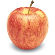 GALA-APPLE-FRESH-PRODUCE-GROUP-LLC.jpg