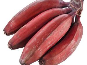 RED-BANANA-FRESH-PRODUCE-GROUP-LLC.jpg