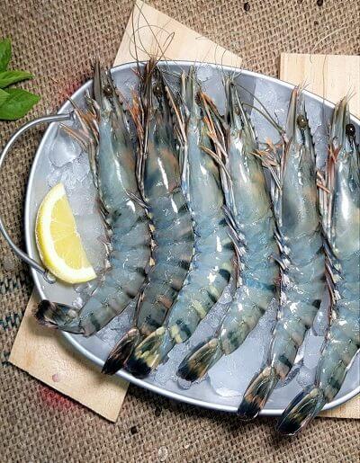 tiger prawns | Offering Tiger Prawns, टाइगर प्रॉन, टाइगर झींगा