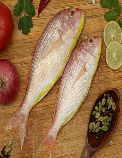 Rani fish (राणी मासा)