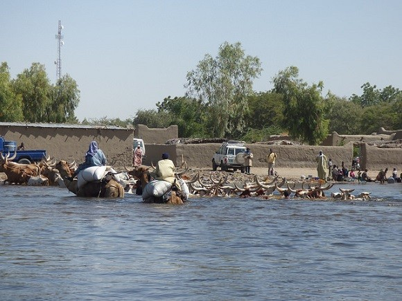 A Lake Chad community