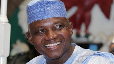 Why We Won't React To Speculated US Travel Ban On Nigeria - Presidency