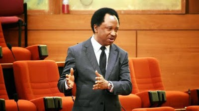 Shehu Sani To Sultan of Sokoto, Stop Talking Before They Come For You