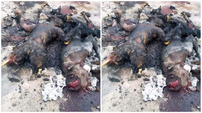Unknown Men Burnt 2 Thieves Beyond Recognition In Calabar