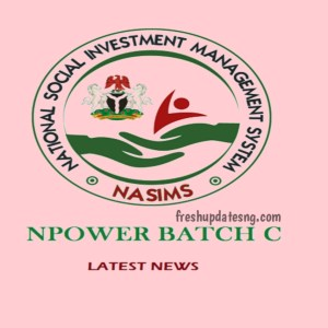 N-Power Batch C Latest Info About Applicants Records on NASIMS Portal