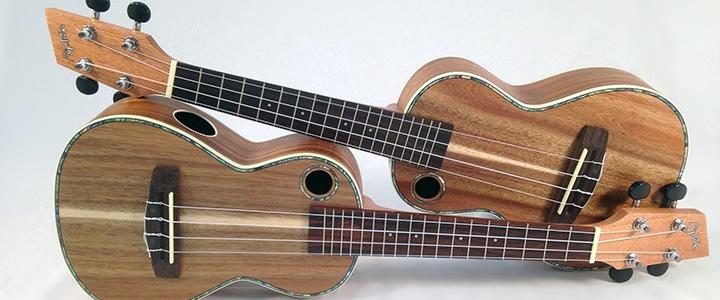 best-ukulele-songs2