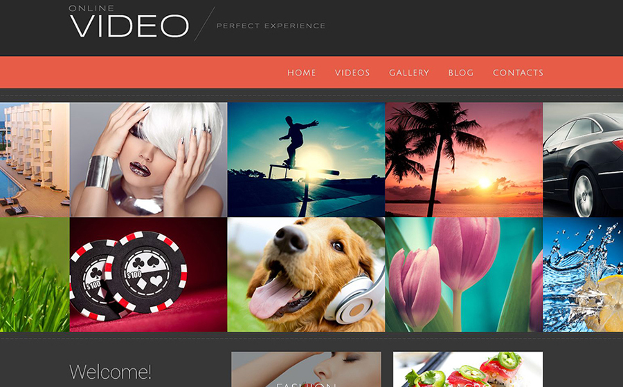 Video Blog WP Theme