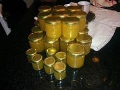 Frida står för all praktisk kunskap om honung och handhavande