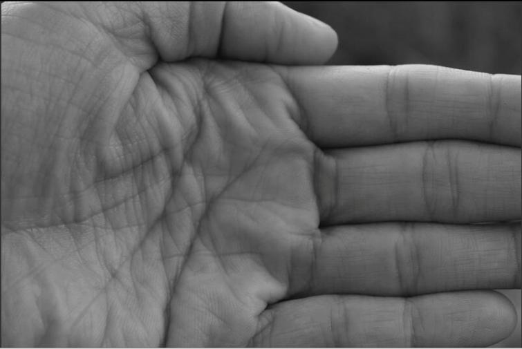 captura-de-pantalla-2017-01-02-a-las-11-44-48