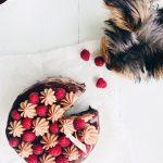 Fridas Bakblogg