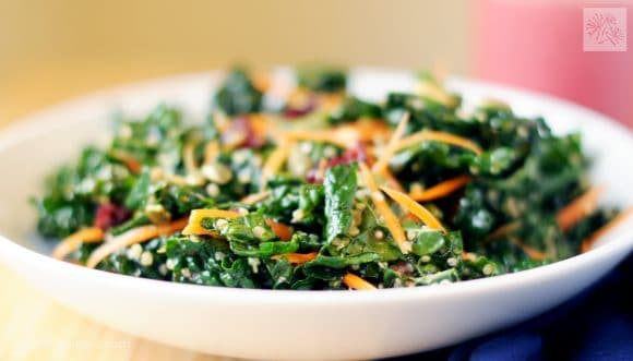 fried dandelions // cranberry kale crunch