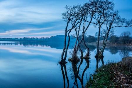 Landskabsfotografering ved Søholm sø