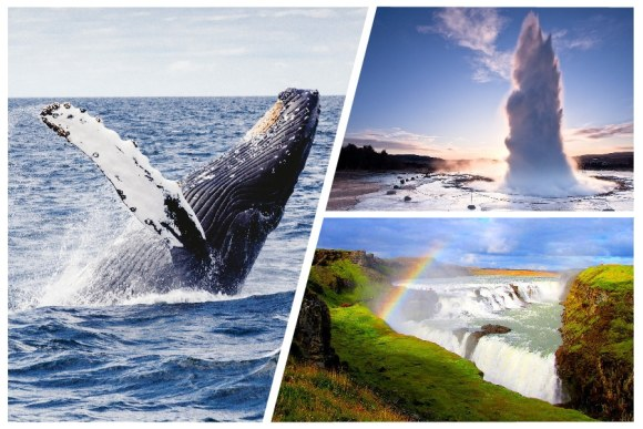 product images_Whale Watching and Golden Circle