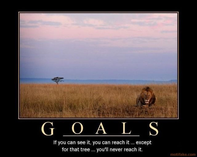 2012 Goals