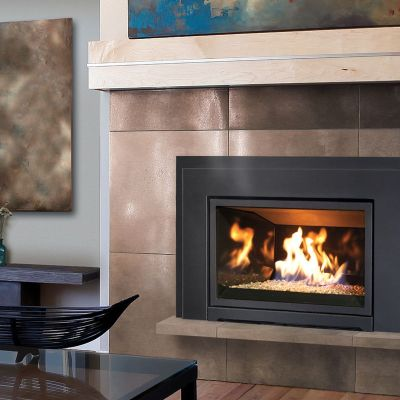 Gas fireplace insert propane fireplace insert regency for Modern gas fireplace price