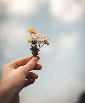 Hand holding a flower image for writing tips post