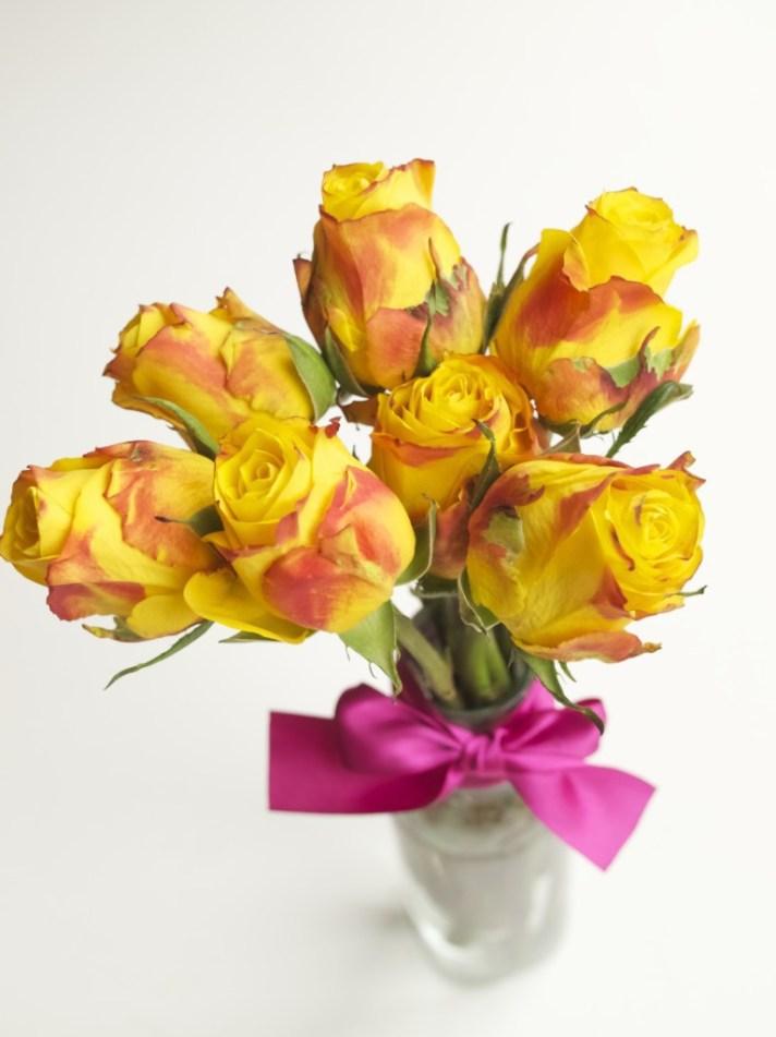 La la la... spring is coming! Roses from Joni