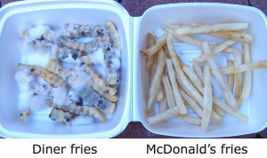 french fries 300x178 12 Year old McDonalds Burger Shows No Sign of Decay