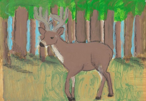 AF A Walk in the Woods 7×10 mixed $45 8-16