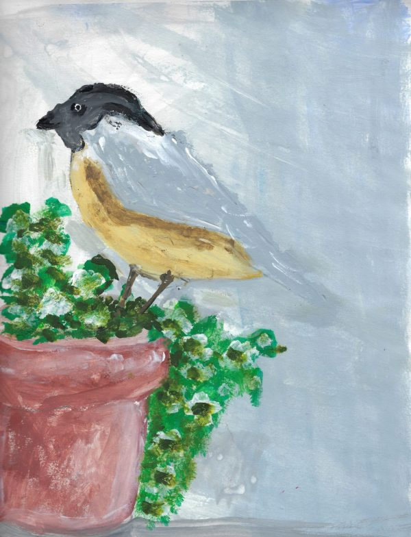 BW Bird In The Garden 9×12 Acrylic $35 4.2016