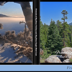 Front and Back Cover of 2015-2020 Big Bear Ealge Photobook
