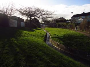 Walk To The Source - 30/01/2016. - A small tributary is channelled from the fields south of Whitchurch, towards Maggs Lane. (photo courtesy of Ruth Revell)