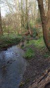 Brislington Brook heading towards St Anne's Well.