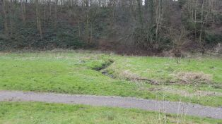 Looking down the slope alongside St Anne's Well looking at the Brislington Brook.