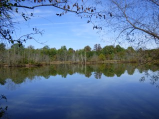 CMP Lower Pond