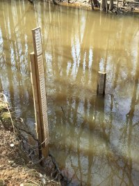 Site-1-Cedar-Creek-Gages