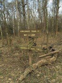 Kingsnake Trailhead Junction