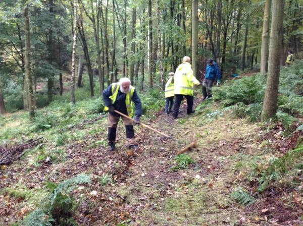 Friends of Dalby Forest | Volunteering in the Great ...