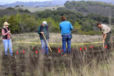 Staff and Volunteers Prepare Seeding Plots