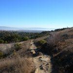 Serpentine Trail
