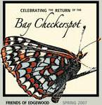 Checkerspot T-Shirt