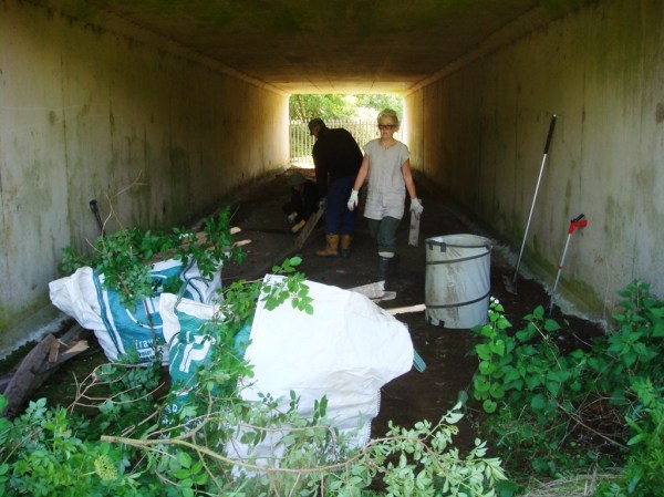 Path Clearing | Friends of Panshanger Park
