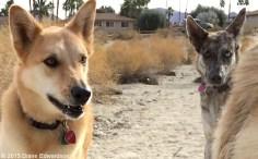Diego & Karma catching their breath