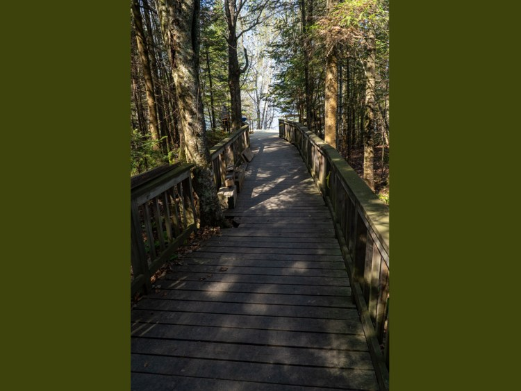 Boardwalk to the new amphitheater