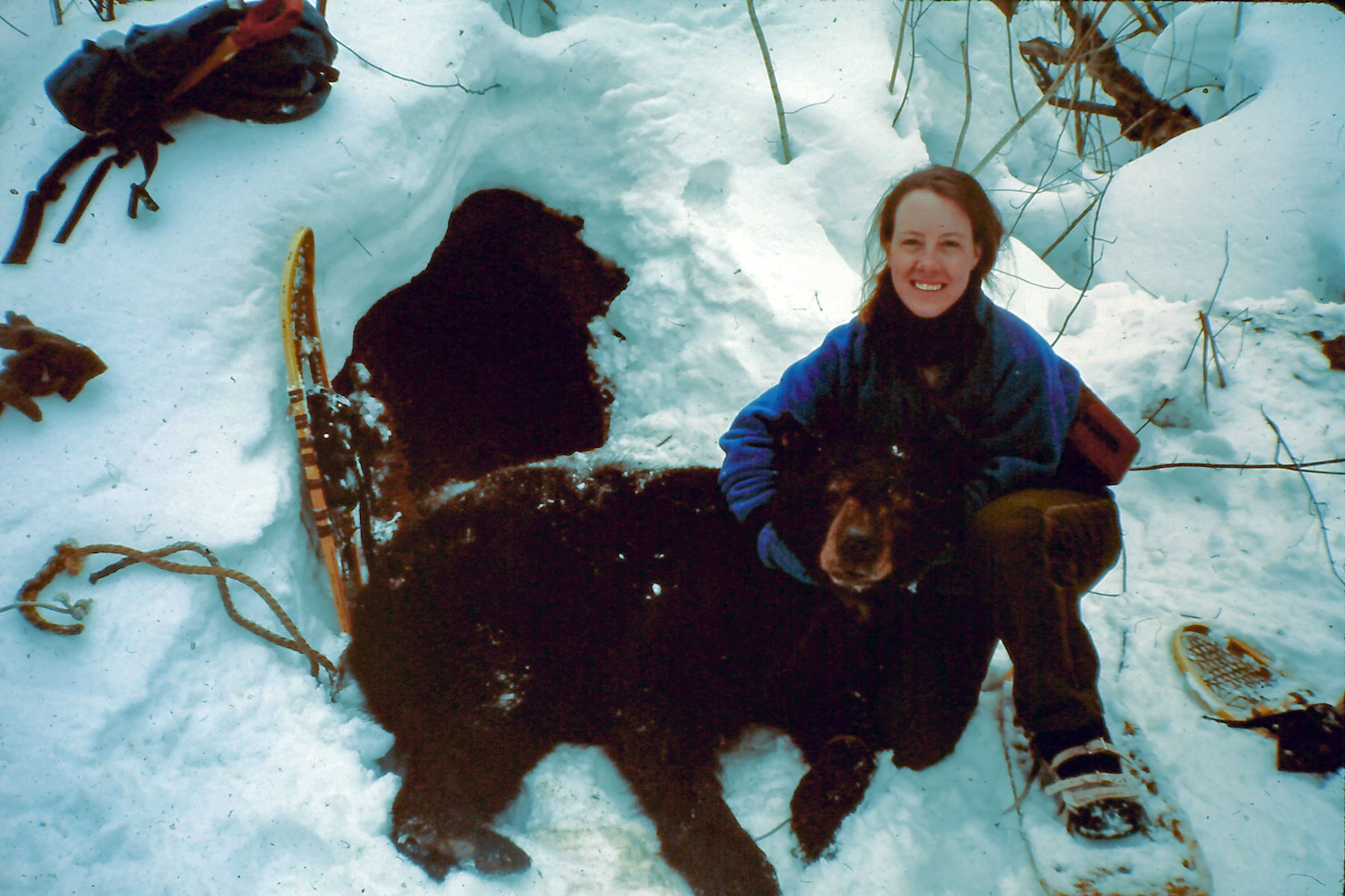 Wendy Bredow with a mama bear outside her den on Stockton Island