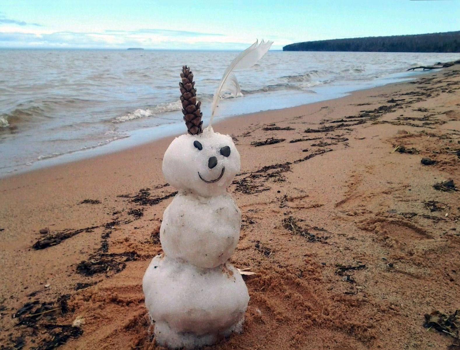 Early season visitor at Meyers Beach