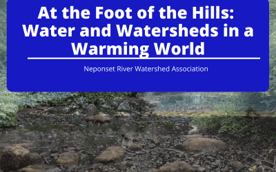 At the Foot of the Hills: Water and Watersheds in a Warming World