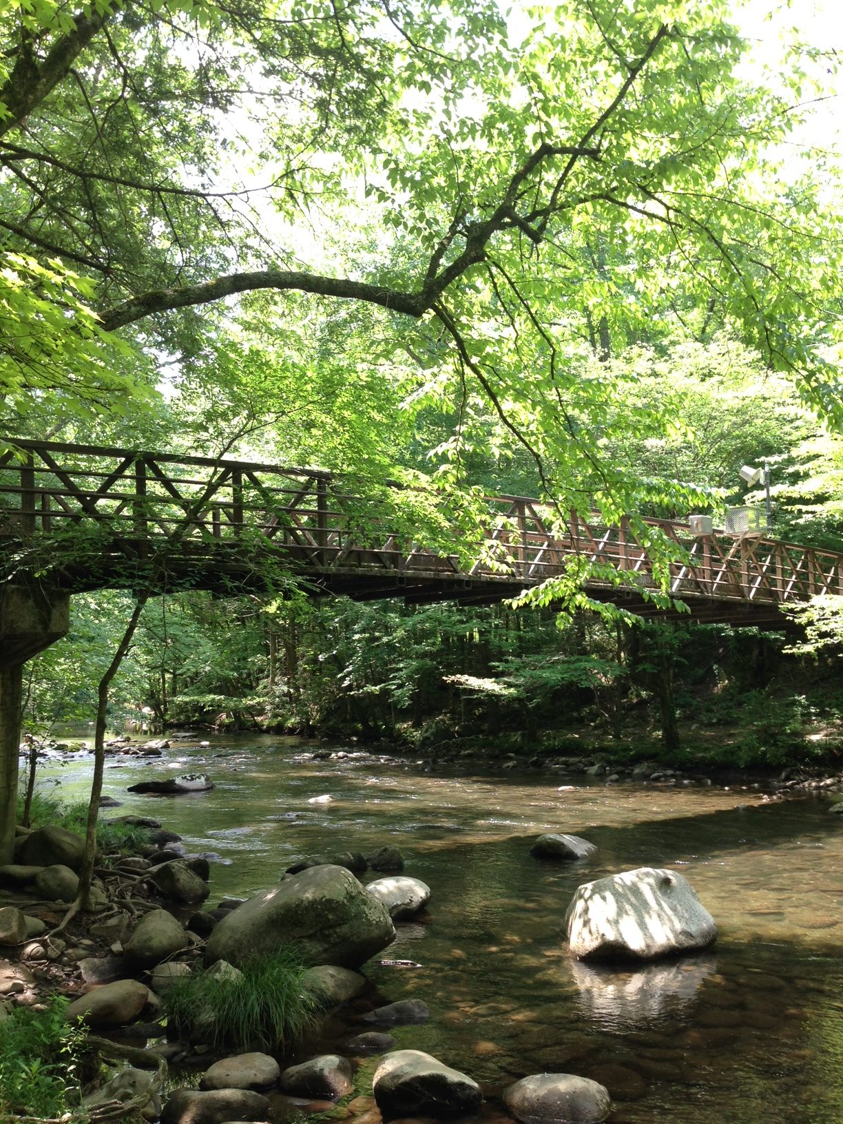 The hike along the gatlinburg trail in the great smoky mountains begins from either gatlinburg or the sugarlands visitor center. Gatlinburg Trail For Walkers Dog Owners And Cyclists Friends Of The Smokies