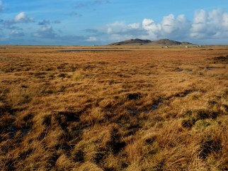 Tiree landscape