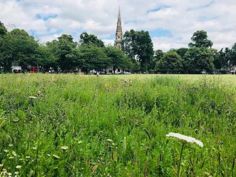 Friends of Turnham Green Meadow with Church in Background