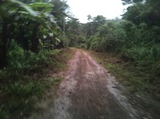 Take the road less travelled. The last 1 hour to Desa Saleman.