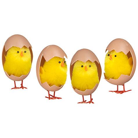 John Lewis Chicks