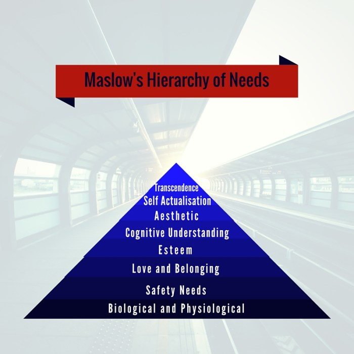 Maslow's Extended Hierarchy of Needs