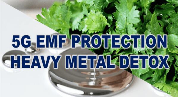 5G-EMF-Protection-Heavy-Metal-Detox